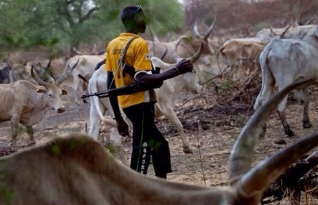 Suspected Herdsmen Hack Farmer to Death in Ibarapa
