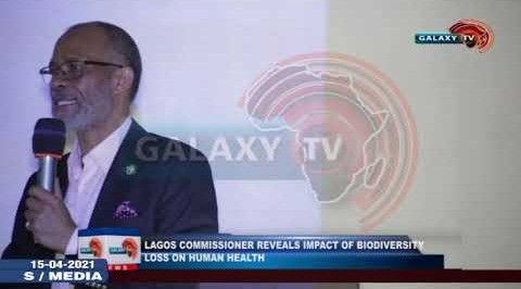 Lagos Commissioner Reveals Impact of Biodiversity Loss on Human Health.